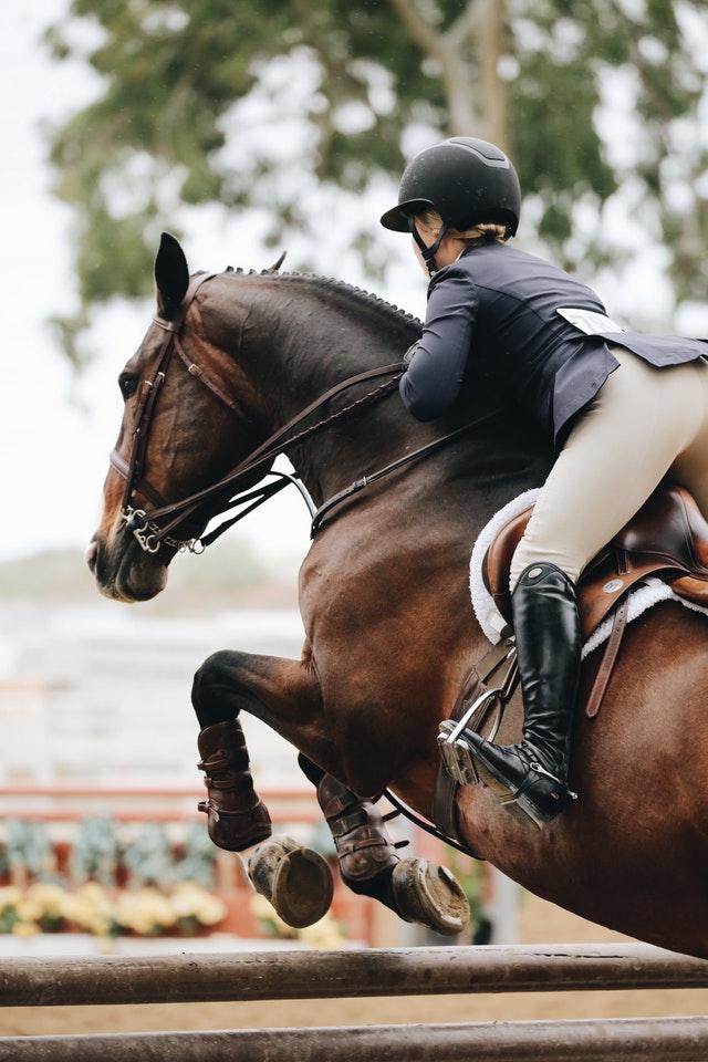 equine-america-dodaci-prehrani-za-konje