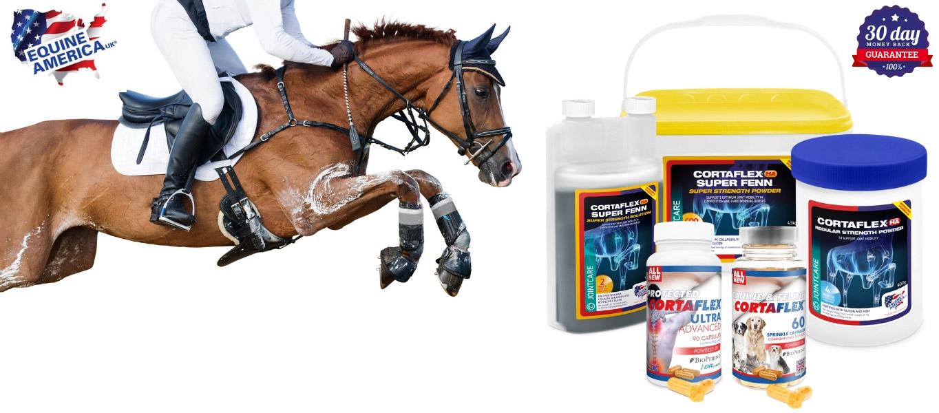 Cortaflex-Equine-America-za-konje