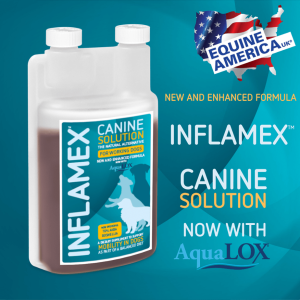 Inflamex-za-pse