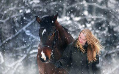 Konj zimi- kako ga pravilno zaštititi u hladnim, vlažnim i zimskim uvjetima?