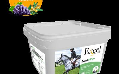 EXCEL OliFlex za zglobove konja